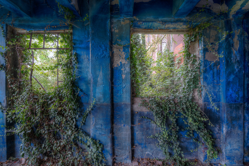 Blue vs Green - Even in this old factory nature is gently taking over.